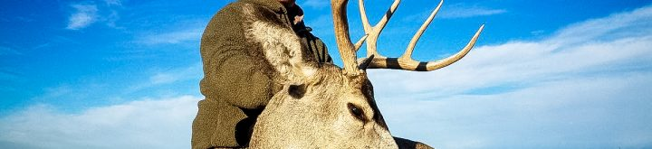 Guided Mule Deer Hunt